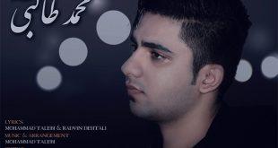 محمد طالبی - حلقه